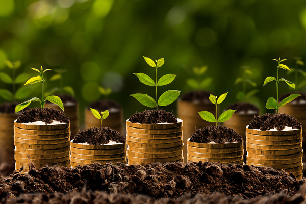 Top dividend stocks for 2017